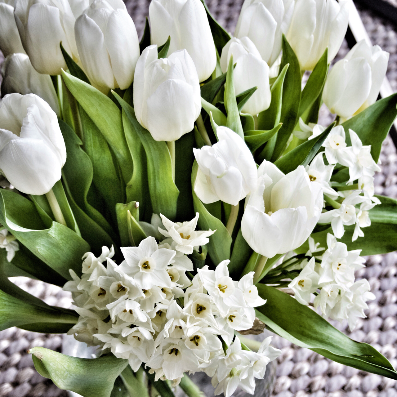 Tulips and Narcissi - gorgeous Spring flowers.