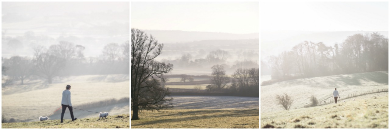 Pictures of Dorset Countryside
